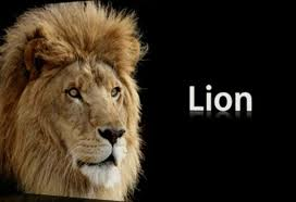 OS X Lion Release Date